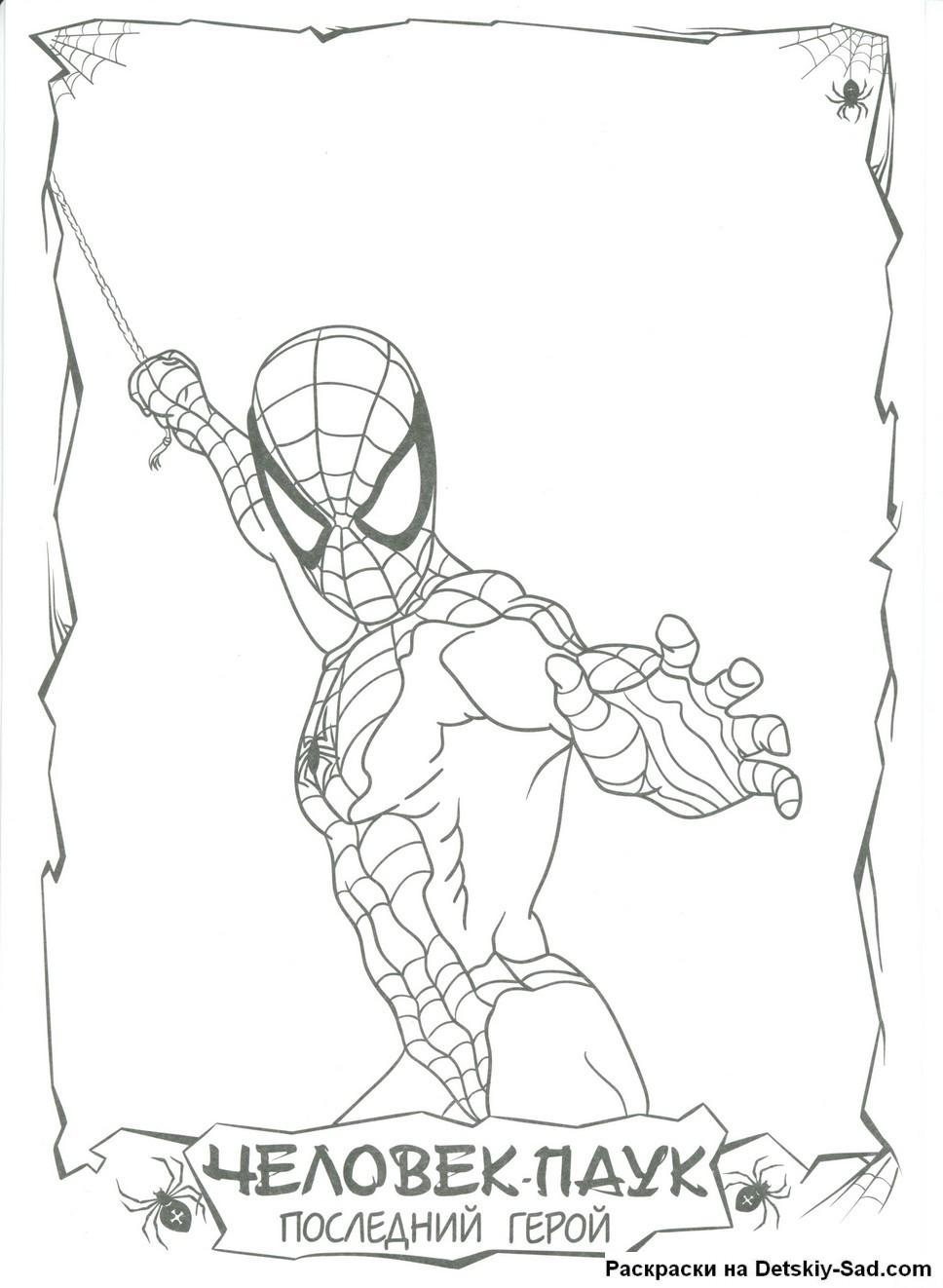 Бесплатные раскраски человек паук