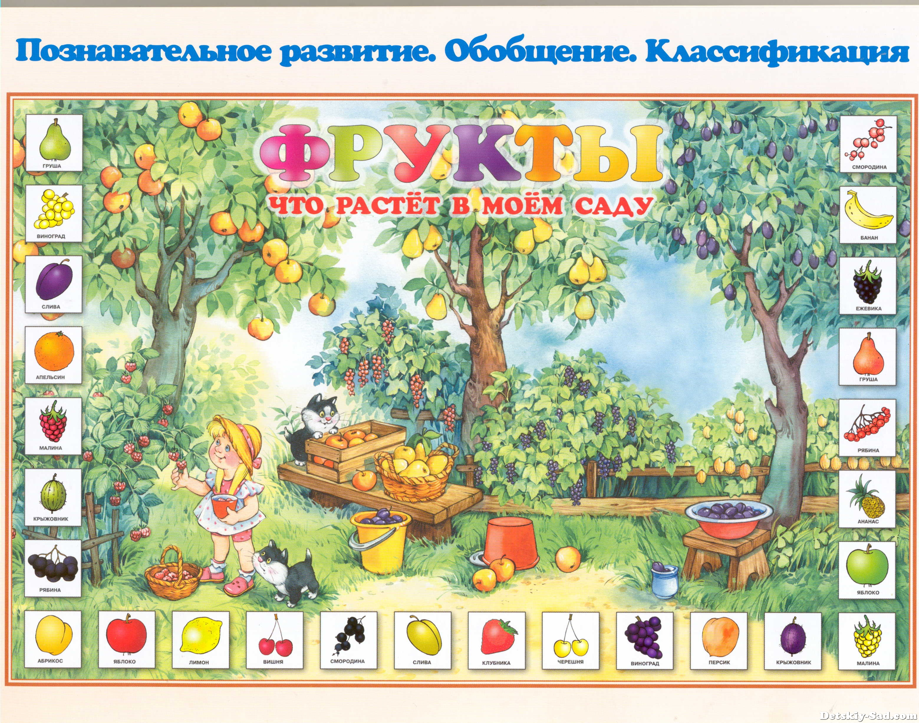 Стенд-плакат «Фрукты — что растет в моем саду?» для детского сада