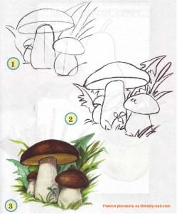 Как нарисовать грибы