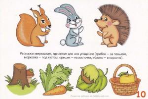 «Угощения для лесных зверюшек» — занятие для развития речи в ДОУ