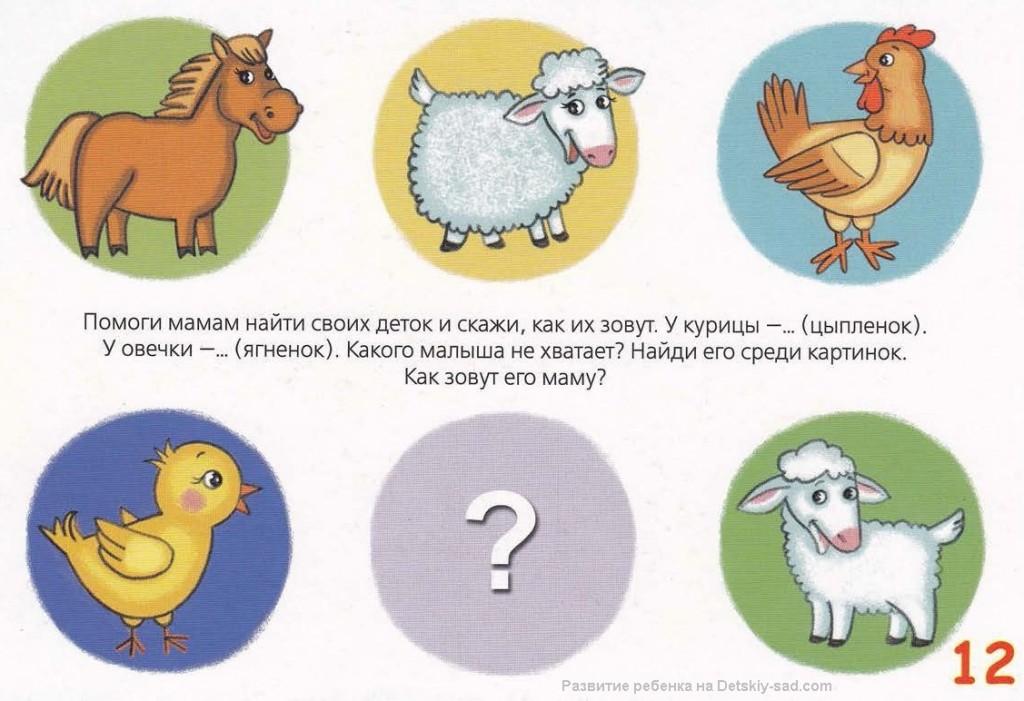 Карточку или стенд занятие животные и