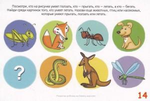 Что умеют делать животные и насекомые — занятие для детей