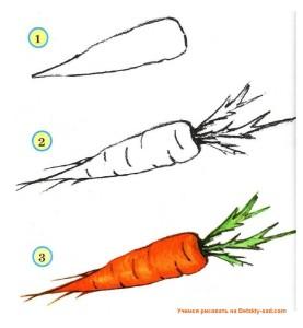 Как нарисовать морковку