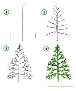 Как нарисовать елку — урок для детского сада