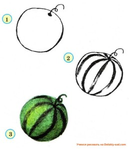 Как нарисовать арбуз