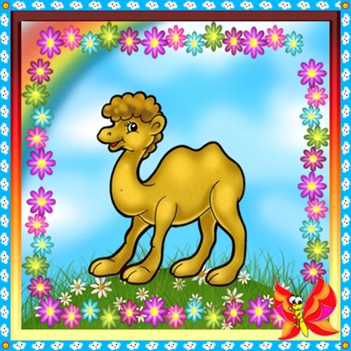 Верблюд раскраска
