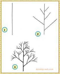 Как нарисовать дерево без листьев