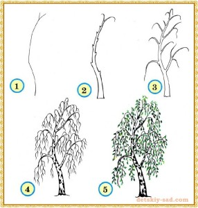 простое дерево рисунок карандашом