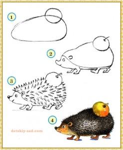 Как нарисовать ежа