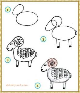 Как нарисовать барана