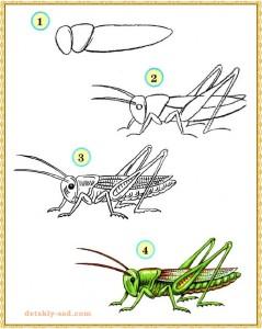 Как нарисовать кузнечика