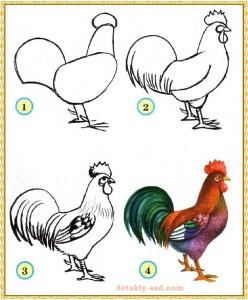 Как нарисовать петуха