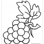 Виноград с листом на ветке раскраска