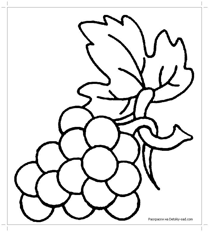 Раскраска виноградная