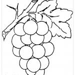 Крупный виноград с листочком раскраска