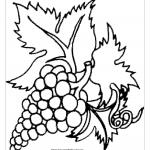 Виноград с листьями для печати