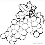 Круглый виноград раскраска