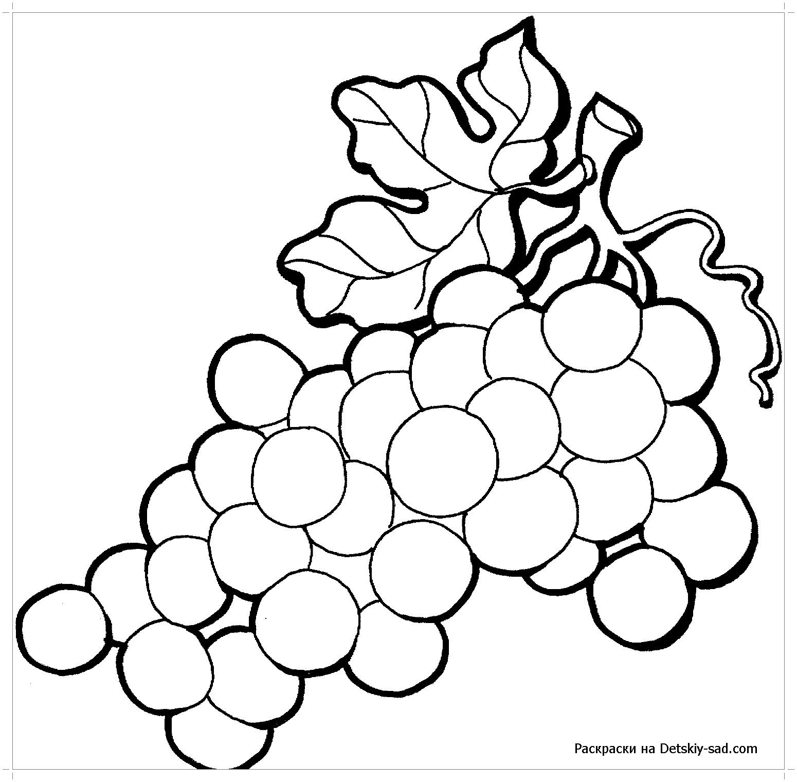 Круглый виноград раскраска - Все для детского сада
