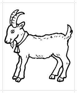 Раскраска коза распечатать