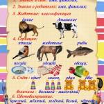 Большой познавательный плакат для детей