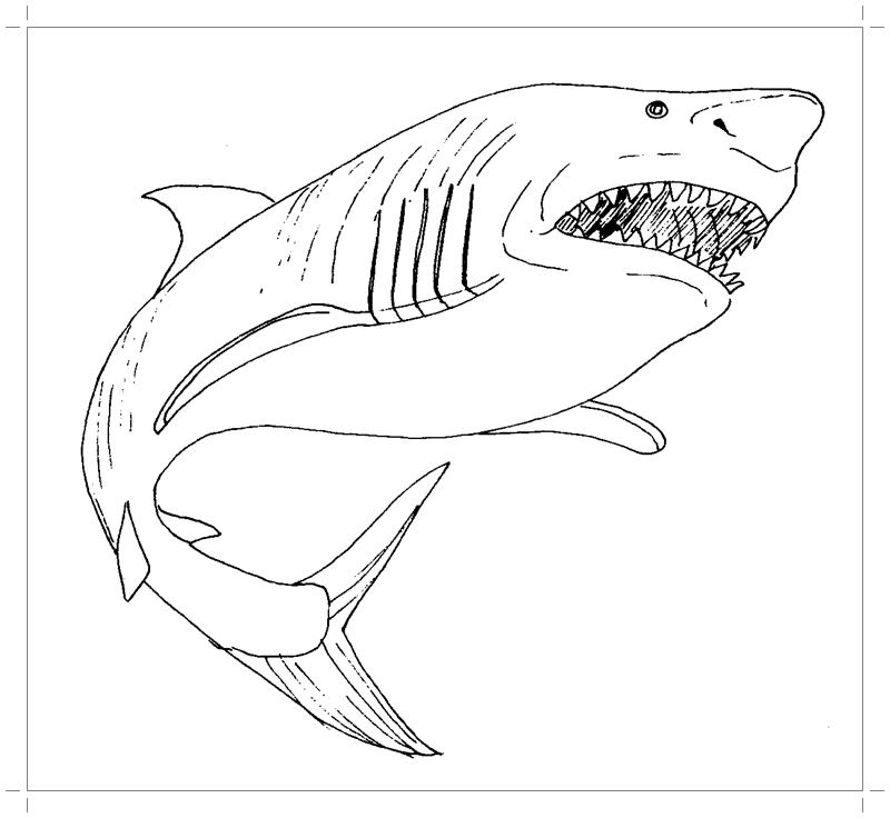 Акула раскраска для детей - Все для детского сада