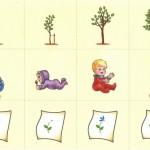 Развивающие карточки с деревом, ребенком и цветком