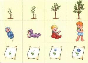 Развивающее занятие с деревом, ребенком и цветком
