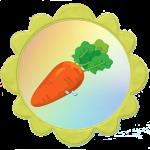 Морковка для группы солнышко