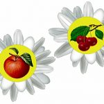 Яблоко и черешня