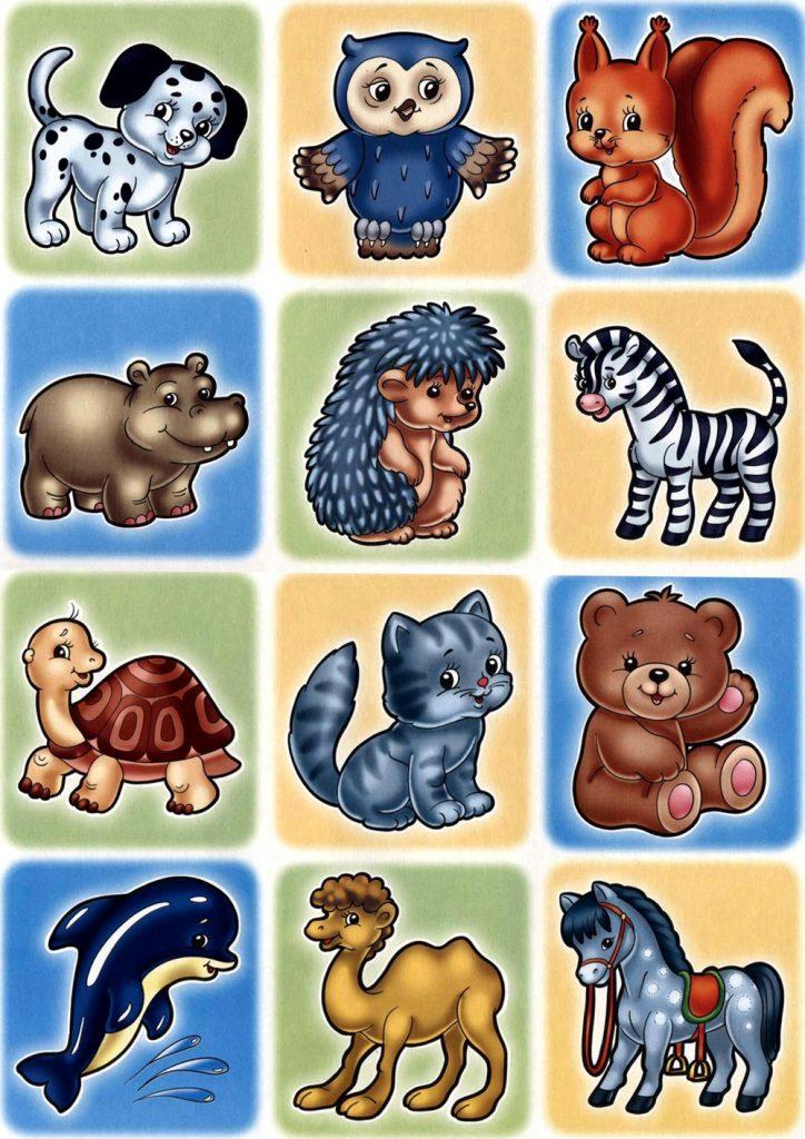 Сборник картинок с животными для ДОУ 1