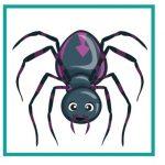 Карточка с пауком для дидактической игры