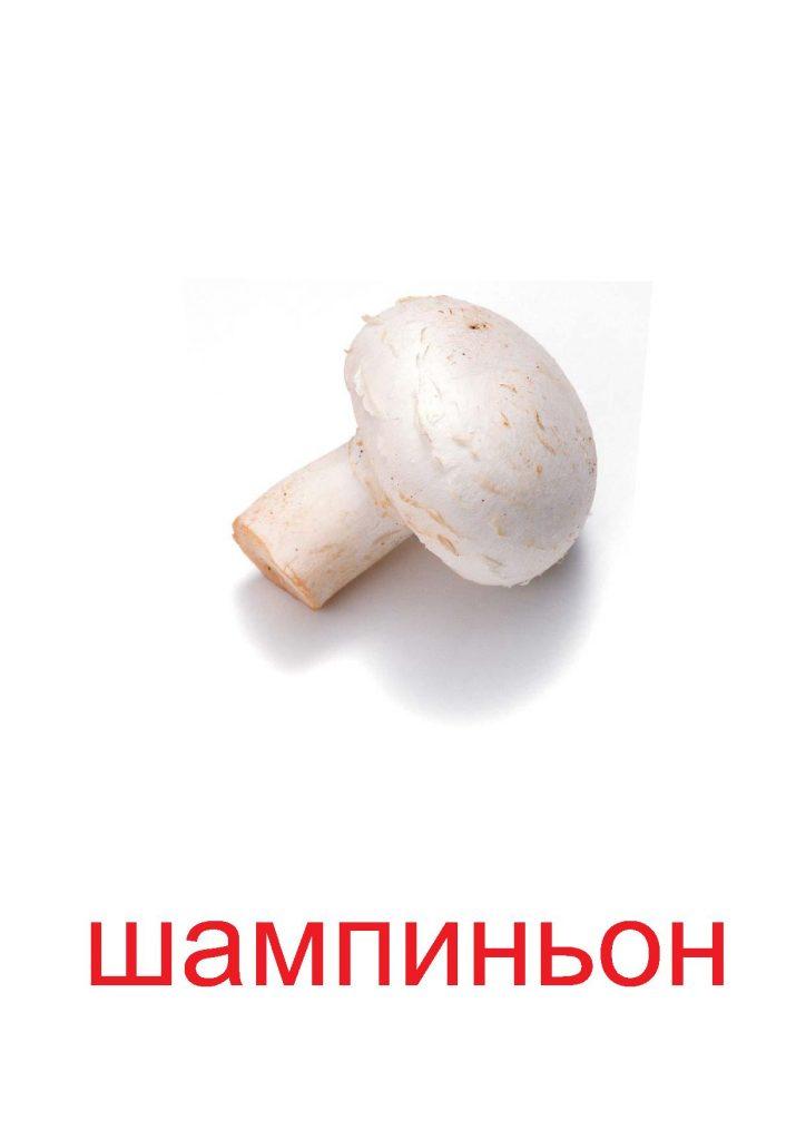 Шампиньон