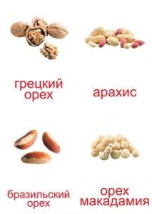 Орехи — картинки с названиями для детей