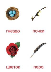 Элементы природы