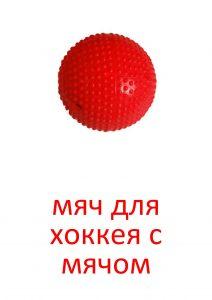 Мяч для хоккея с мячом