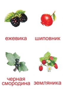 Карточка для изучения ягод