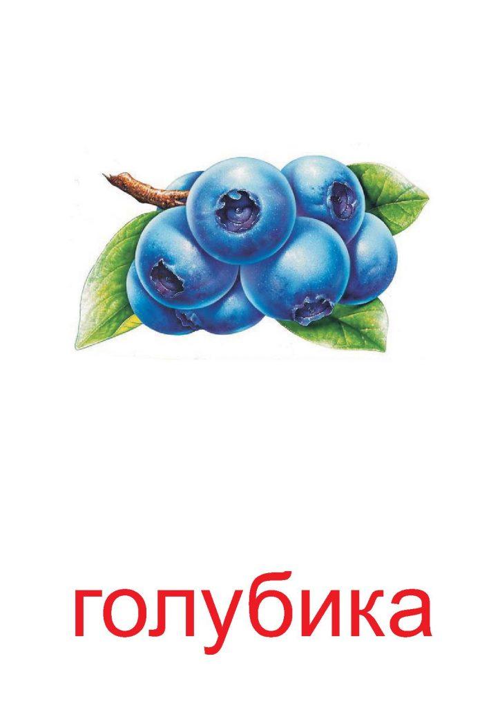 Голубика для детей