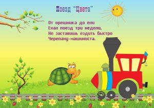 Потешка с поездом и черепахой
