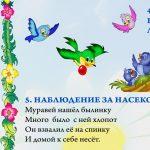 """Фрагмент 3 первого плаката """"Наблюдения летом"""""""
