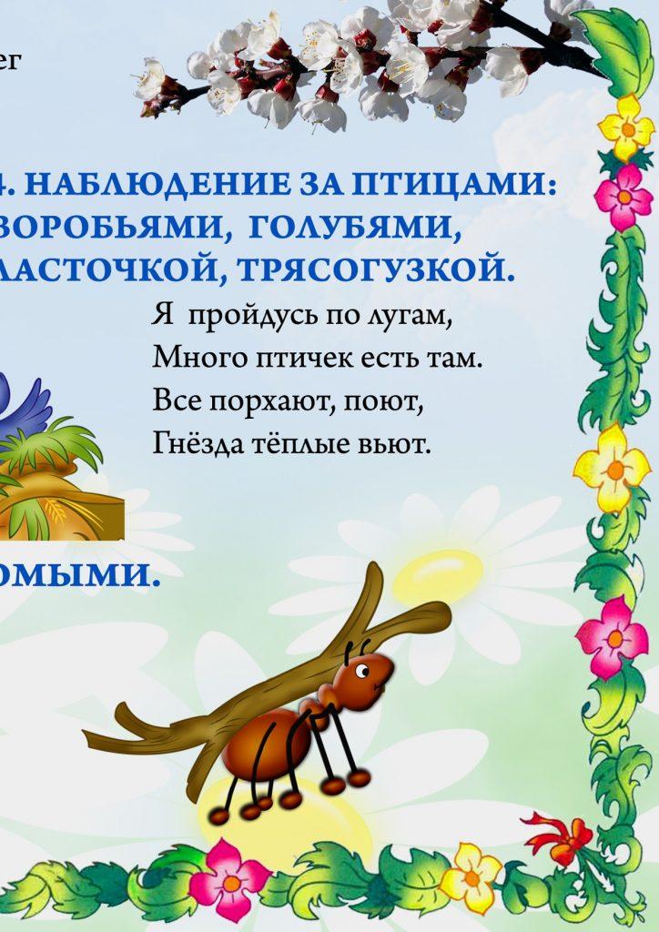"""Фрагмент 4 первого плаката """"Наблюдения летом"""""""