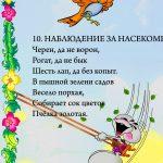 """Фрагмент 3 второго плаката """"Наблюдения летом"""""""