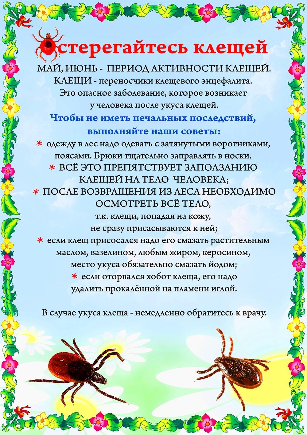 «Остерегайтесь клещей» — консультация для родителей + плакат