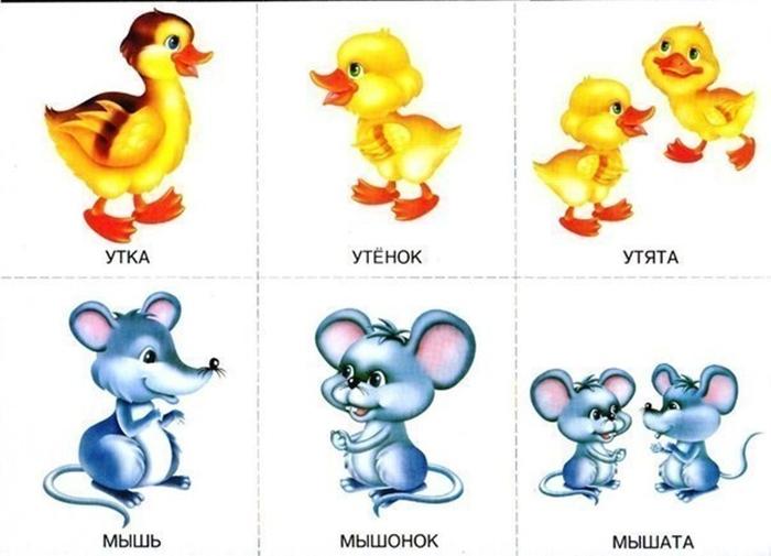 Детеныши утки и мышки