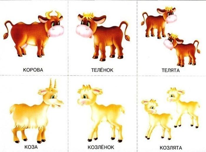 Детеныши коровы и козы