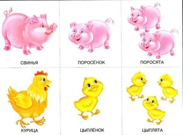 Детеныши свиньи и курицы
