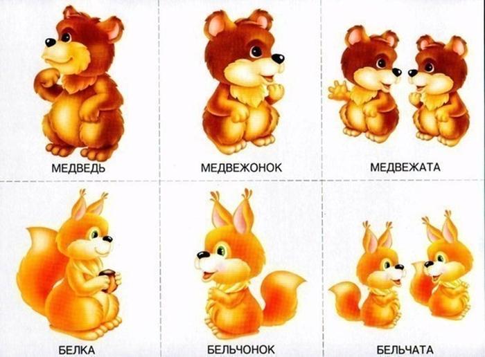 Детеныши медведя и белки