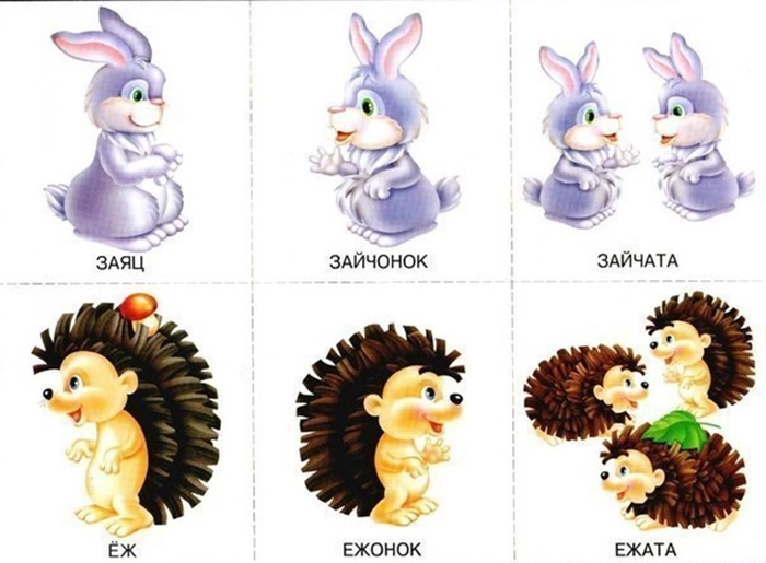 Детеныши ежа и зайца