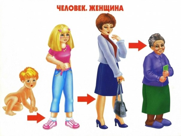 Как растет женщина