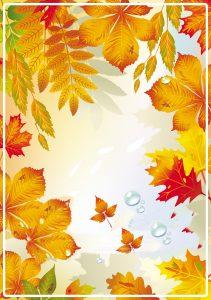Непрозрачный фон осень для презентаций с белой рамкой