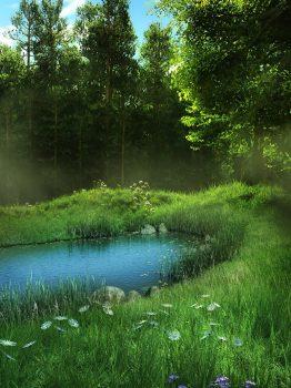 Красивая иллюстрация леса у пруда